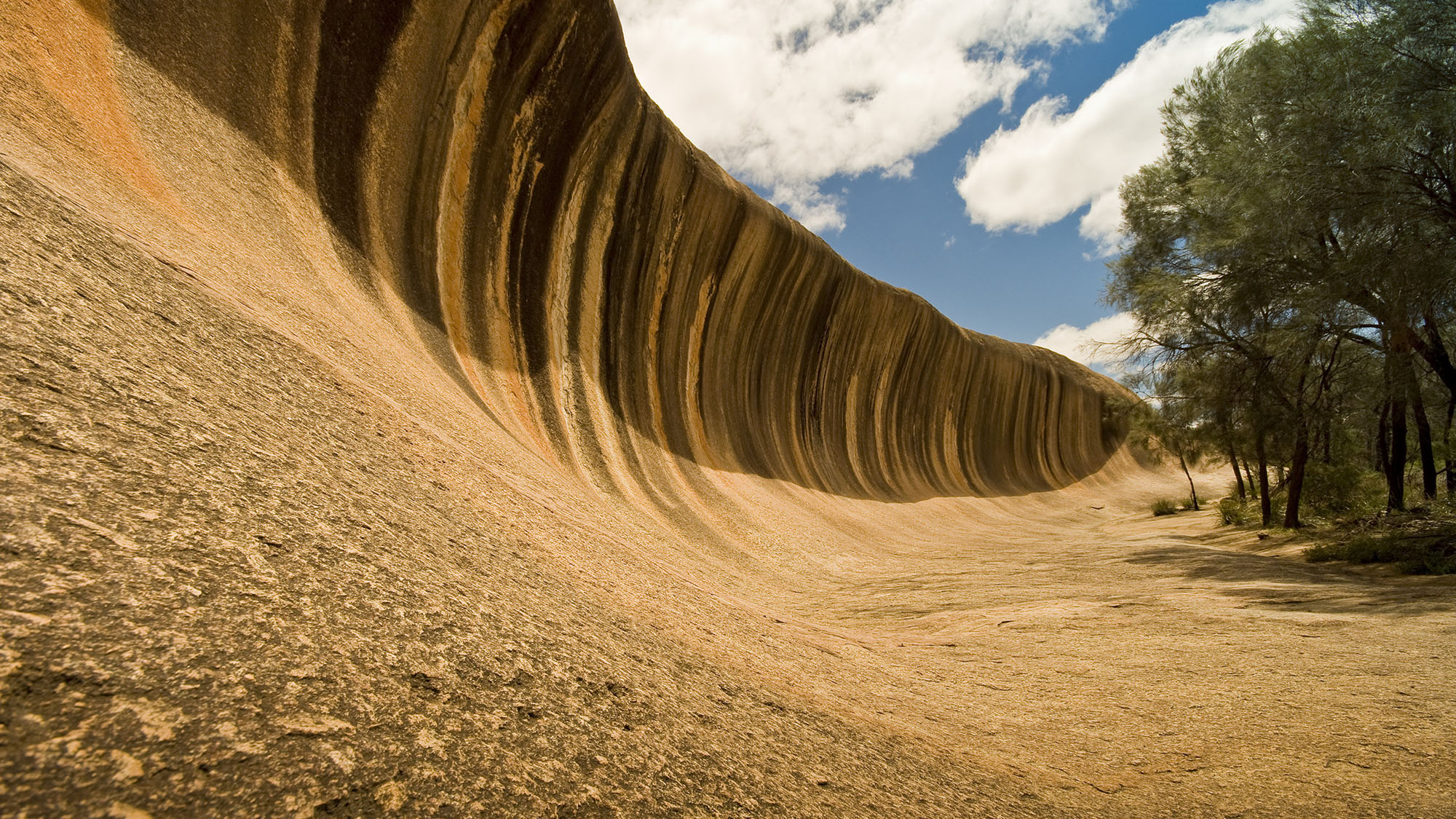 Wave Rock, Wildflowers & Aboriginal Culture